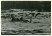 1991 Press Photo Weber State Rescues Catherine Rolling During Rotc Summer Camp