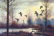 David Hagerbaumer In Early - Mallards And Teal Artistand039s Proof On Paper