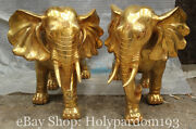 24 Chinese Brass Fengshui Africa Elephant Bat Wealth Fu Blessing Statue Pair