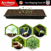 Plant Growing Trays 10x 20.75andrdquoperfect Garden Seed Starter For Seedlings Soil