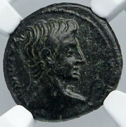 Laodicea, Phrygia 27bc Ancient Roman Coin Augustus Serpent Asclepius Ngc I89128