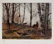 Hagerbaumer Approaching Spring Wild Turkey Signed Limited Ed On Paper W/ Rmq