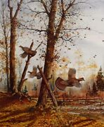 David Hagerbaumer Indian Summer - Ruffed Grouse Signed Limited Edition On Paper