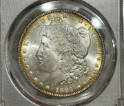 1891-cc Pcgs Ms63 Morgan Silver Dollar Bright Luster And Golden Toning