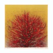 Ychante/star Jo-1 Treetop Red /woodblock Print/autograph Marked/1973 Production