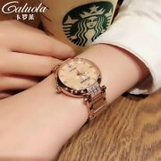 Luxury Women Lady Stainless Steel Band Crystal Auto Mechanical Wrist Watch 34mm