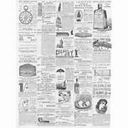 Victorian Adverts Pin Cushions, Ozone Paper, Ivory Jelly - Antique Print 1886