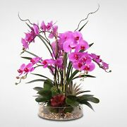 Real Touch Purple Phalaenopsis Orchid And Succulents In A