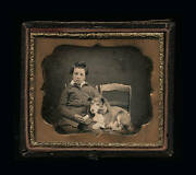 1850s Daguerreotype Photo New Hampshire Boy And His Dog Both Id'd / Sealed