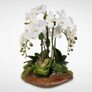 Real Touch 6-stem Phalaenopsis Orchids And Succulents In Wood