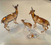 Collectible Scs Limited Deer Figurine Display Set Of 4 Free Shipping