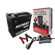 Tx20l-bs Motorcycle Battery Harley Davidson 1200cc Xl1200 Y W/ Charger Maintaine