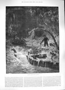 Old Antique Print 1884 Catching Alligators Florida America Hunting Boat 19th