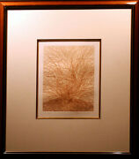 Azoulay Caprea From The Willows Suite Signed Numbered Framed Etching Tree L@@k