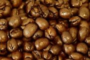 5 10 15 Lbs Tanzanian Northern Peaberry Premium Coffee Beans, Fresh Daily