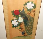 Old 19th Century Japanese Peacock Bird And Roses Watercolor Silk Painting Signed