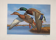 Florida 9 1987 State Duck Stamp Print Mallards By Ronald Louque