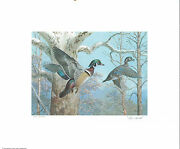 Pennsylvania 1 1983 State Duck Stamp Print Wood Ducks By Ned Smith