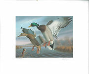 Virginia 1 1988 State Duck Stamp Print Mallards By Ronald Louque Medallion Ed