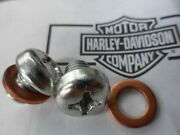 Nos Harley Davidson Chrome Philips Pan Head Screws With Washers 45369-99 Qty 2