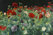 Poppies Study For Carnation Lily Lily Rose Flowers By John Singer Sargent Repro