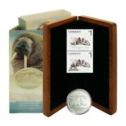 Canada Walrus And Calf Coin And Stamp Set 5 2005 Wood Presentation Case Coa