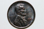 One Cool Toned 1929-p Mint State - Brown Lincoln Cent Rim Nick Obv. Lpx0898