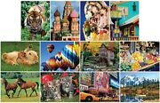 Jigsaw Puzzle Multipack 12 Assorted Themes Landscapes Scenes And Animals New