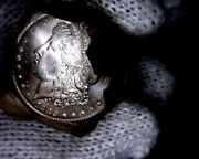 1882-cc Blast White Unc Morgan Silver Dollar From A Fresh Roll Will Grade Out