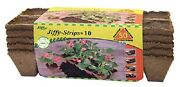 12 Jiffy 50 Ct 1.75 Square Peat Strips Seed Starting Spaghnum Moss - Js50