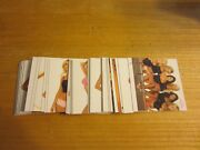 2002 Bench Warmer Update Set Of 50 Trading Cards Mary Riley Carrie Stroup +++