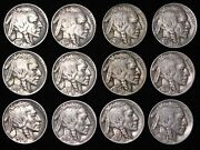 All 12 Nice Coins 1934 - 1938 P D S Buffalo Nickels 5c Short Set Free P/h.