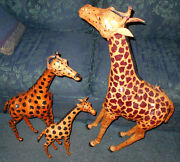 3 Leather Covered Giraffe Statues 38 29 And 19 Inches Tall Wood Carved Metal Nice