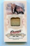 2008-09 Champ's Wooly Mammoth Femur Fossils And Artifacts Mini Sp Relic Fa-wm