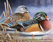 Wood Ducks 2020 Wisconsin Duck Stamp Winning Print