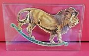 🎁1800's Victorian Stollwerck Chocolate Advertising Trade Card Lion Diecut 🎁