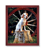 Pointer Puppy Dog In Wagon Kids Room Animal Wall Picture Cherry Framed Art Print