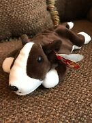 Ty Beanie Baby Bruno Dog 1997 No Stamp W/ Tag Errors / Oddities Pe Pellets