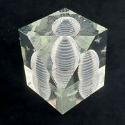 Steuben Glass Paperweight Busy As Bees Hot9428