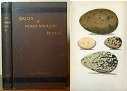 Rare Eggs Of North American Birds By Chas J. Maynard 10 Hand Colored Plates