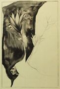 Frank Howellemerging Cactus Flower 1986 Hand Signed Lithograph Make An Offer