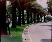 Lg810 2000 Orig Color Photo Miami Beach Parks Department Officers Behind Palms