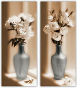 Soft Floral I And Ii By Christine Zalewskiset Of 2 Photography Flower Art Prints