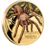 Niue - 100 Dollar 2020 - Deadly And Dangerous - Tarantel - In Farbe - 1 Oz Gold Pp