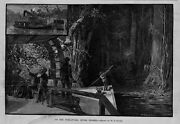 On The Ocklawaha River Florida Silver Springs Wilderness Crooked Water Steamboat