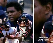Gale Sayers Chicago Bears Running Back 2510 Nfl Football 8x10-40x50 Choices