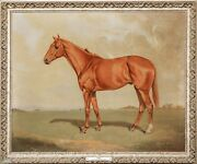 Large 20th Century British Horse Portrait Mackesons Falls Of Clyde