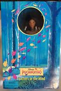 Mattel—disney Pocahontas Feathers In The Wind Barbie 1996 Nrfb 14920