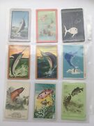 18 Vintage Fish Lot Single Swap Playing Trading Cards Collect 1940's 1950's