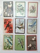 18 Vintage Birds Misc Random Lot Single Swap Playing Trading Cards 1940's 1950's